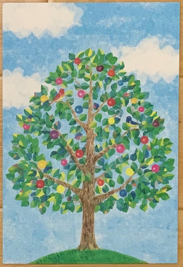 きらり。ポストカード(木)
