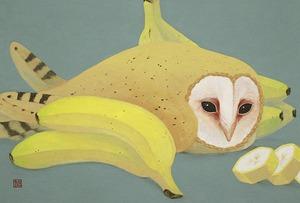 ポストカード『マダガスカルのバナナ園』