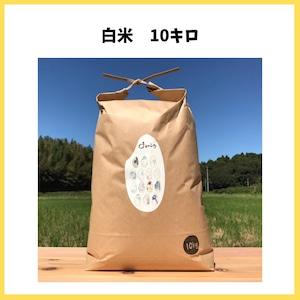 農薬も化学肥料も使わないで育てたお米【白米 10kg】