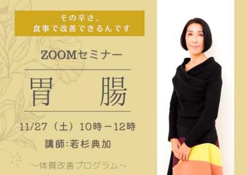 11/27(土)開催 病気別・体質改善プログラム 胃腸 (ZOOMセミナー&オンライン講座)