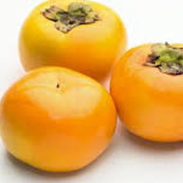富有柿 L(12玉)約3kg 河北農園 【福岡】(11月から販売)