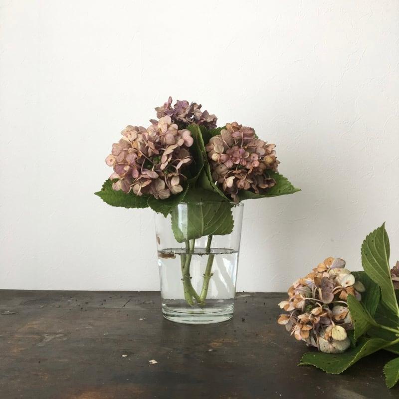 ガラスのフラワーベース|Glass Flower Vase