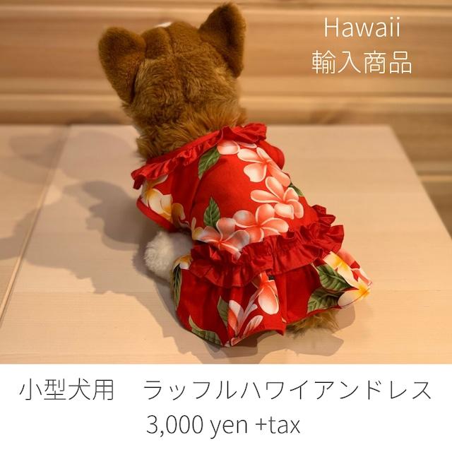ハワイ限定商品を安心の国内配送で!犬用ハワイアンドレス 小型犬用 ハワイアン
