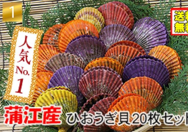 ヒオウギ貝20枚セット【冷凍・送料無料】