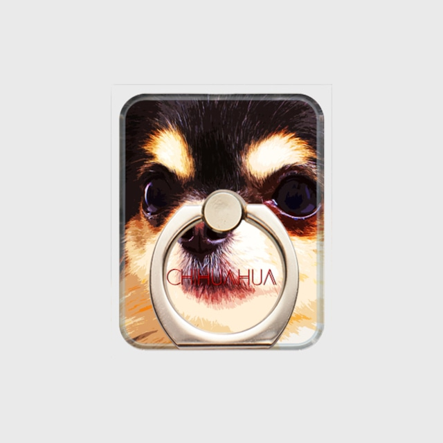 チワワ おしゃれな犬スマホリング【IMPACT -color- 】