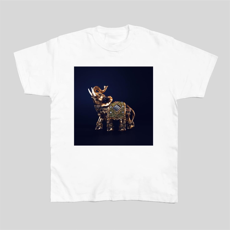 ダジャ絵T 12インチレコード(象の像)