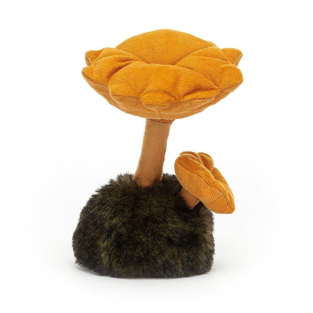 Wild Nature Chanterelle Mushroom_WN2C