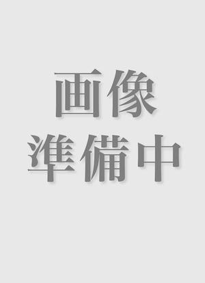 仏書解説大辞典 著者別書名目録