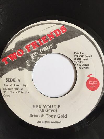 Brian(ブライアン) & Tony Gold(トニーゴールド) - Sex You Up【7'】