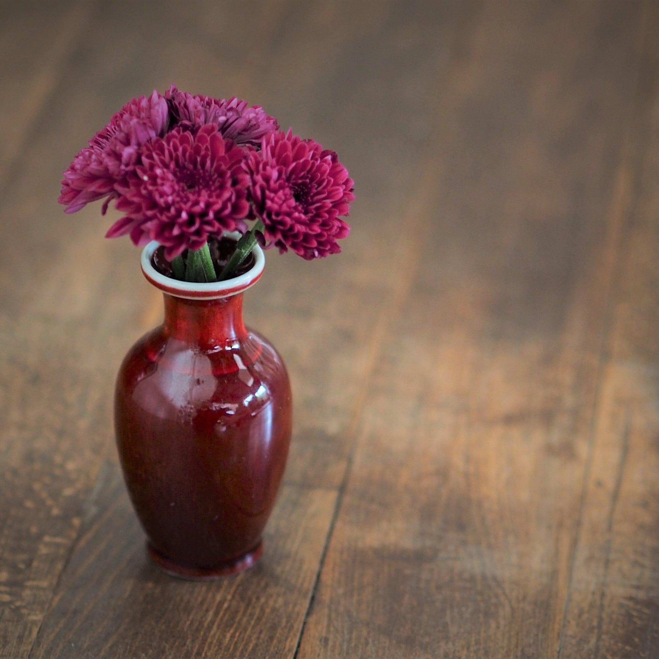 『紅の花瓶/壺』景徳鎮
