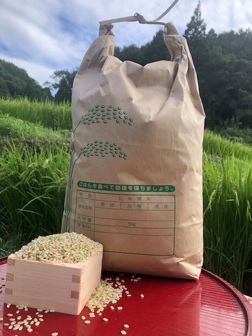 【玄米5kg】愛媛 自家農園減農薬栽培あきたこまち令和3年産新米!