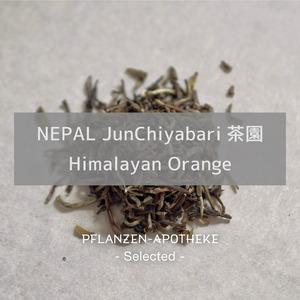 Nepal JunChiyabari茶園 ヒマラヤンオレンジ