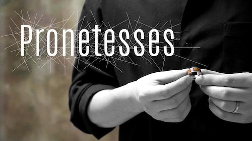 Pronetesses by TAKAHIRO