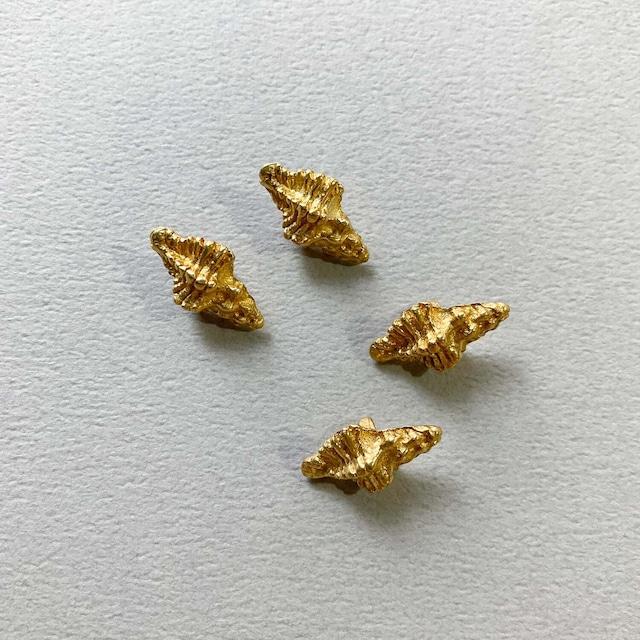 Duaオリジナル ゴツゴツ巻貝の真鍮ボタン