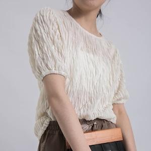 Sheer pleats cut&saw(シアープリーツカットソー)b-206