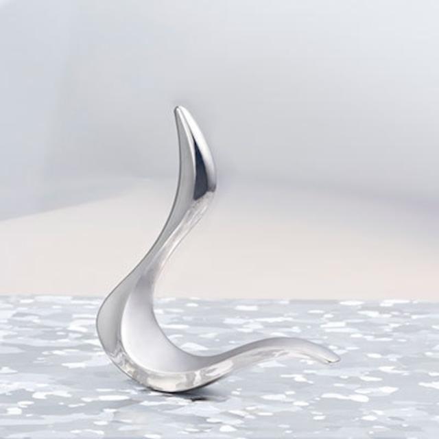 シーニュ シルバー cygne Silver(フェイシャルセルフケアツール)