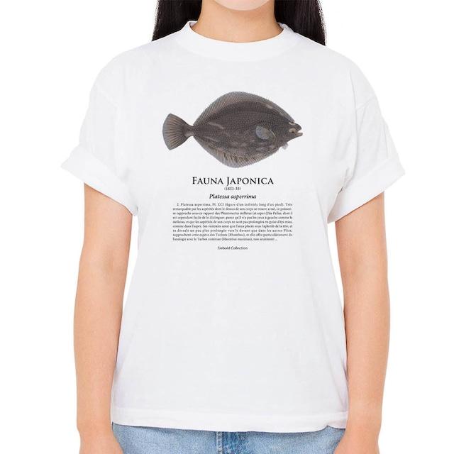 【サメガレイ】シーボルトコレクション魚譜Tシャツ(高解像・昇華プリント)