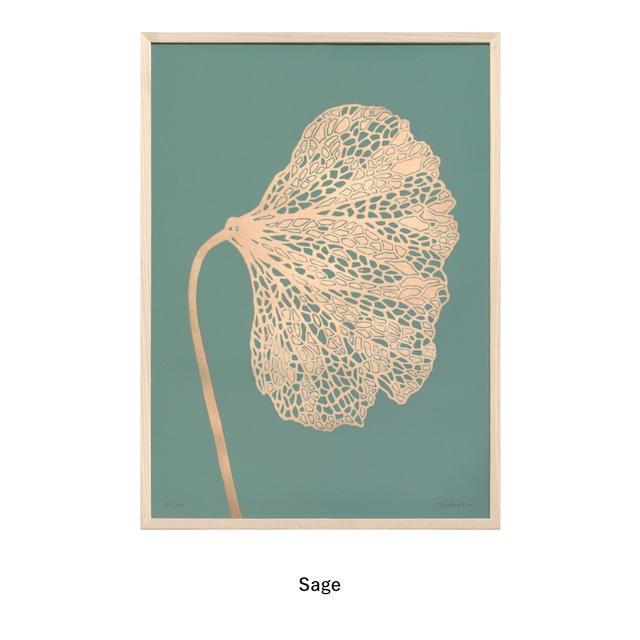 Monika Petersen  Lino Print ポスター Poppy 1 Gold フレームセット