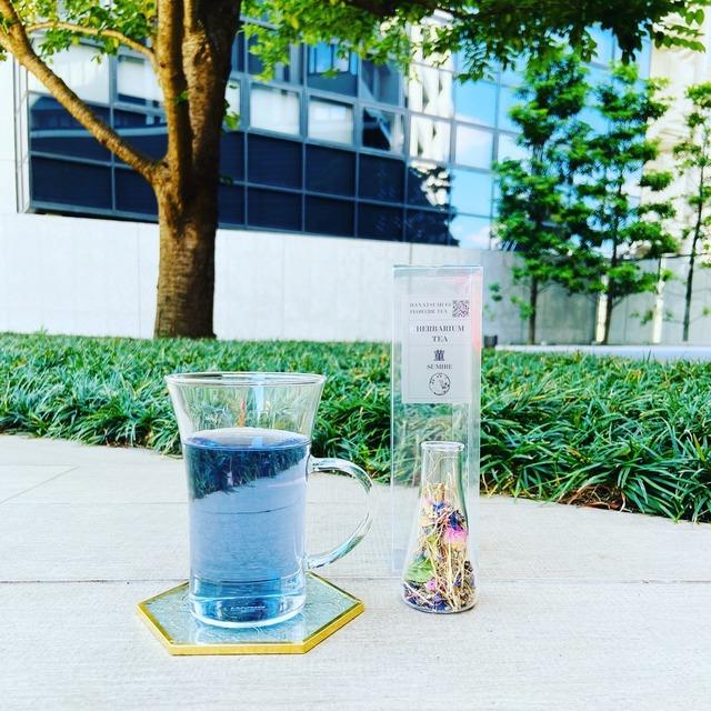 ハーバリウムティー 菫SUMIRE ー植物標本茶 ー  / ガラスのTEABAG / ハーブティー ギフト プレゼント 農薬不使用