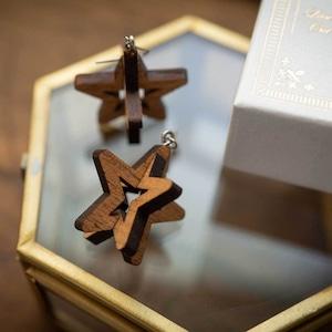 dimensional star / スター(Pierced Hang)