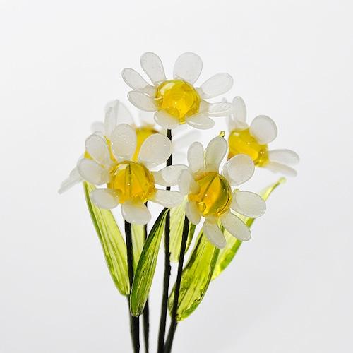 グラスフラワー デージー(ホワイト)単品