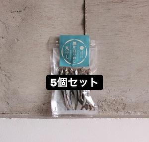 焼片口イワシ丸干し【5個セット】