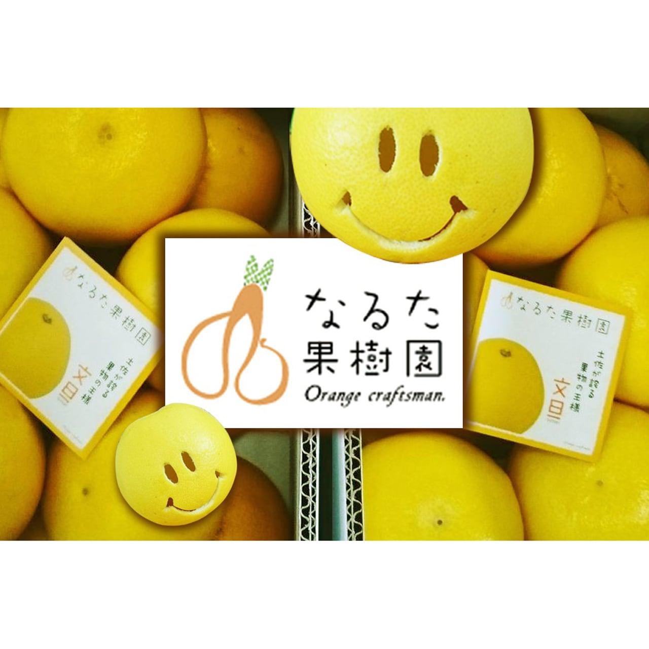 成田果樹園の文旦〔贈答用〕7kg