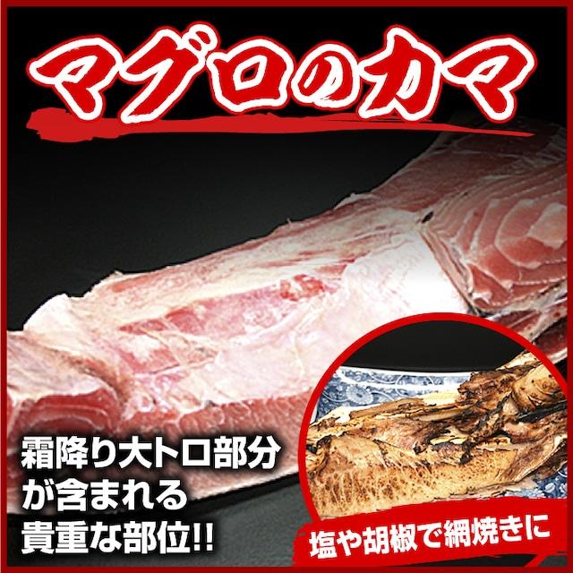 鮪 カマ(船内凍結品):1個・約300〜500g【天然鮪、マグロ、まぐろ】(0012)