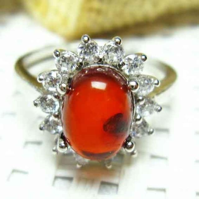 レッドアンバー 赤琥珀 指輪 リング フリーサイズ メール便可 [M便 1/20] 115-405
