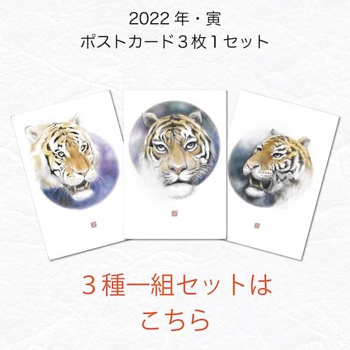 【3種1組セット】2022年 ポストカード・年賀状 寅