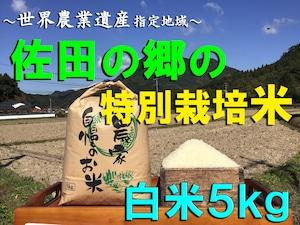 【令和3年新米】佐田の郷の米(白米5kg/玄米5.5kg)【特別栽培米】