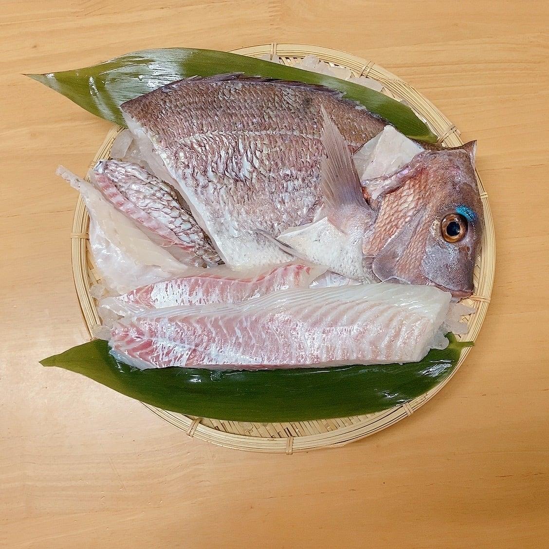 天草産 真鯛1尾食べ尽くしセット2枚卸(冷蔵)