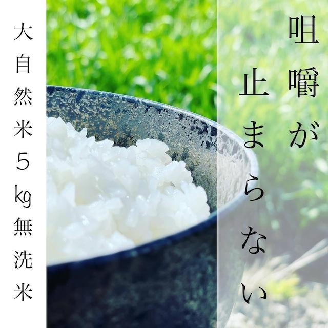 新米 !! 大自然米【5kg】無洗米