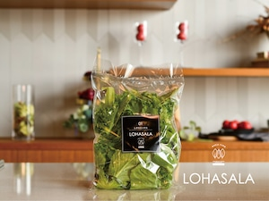 LOHASALA レタスミックス小分け 10個×100g 無洗LED栽培野菜