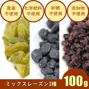 ミックスレーズン(100g)ドライフルーツ 3種類MIX 農薬不使用 化学肥料不使用 砂糖不使用 ノンオイル 無添加