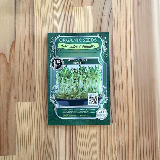 オーガニックの種から育てる発芽豆キット レンズ豆