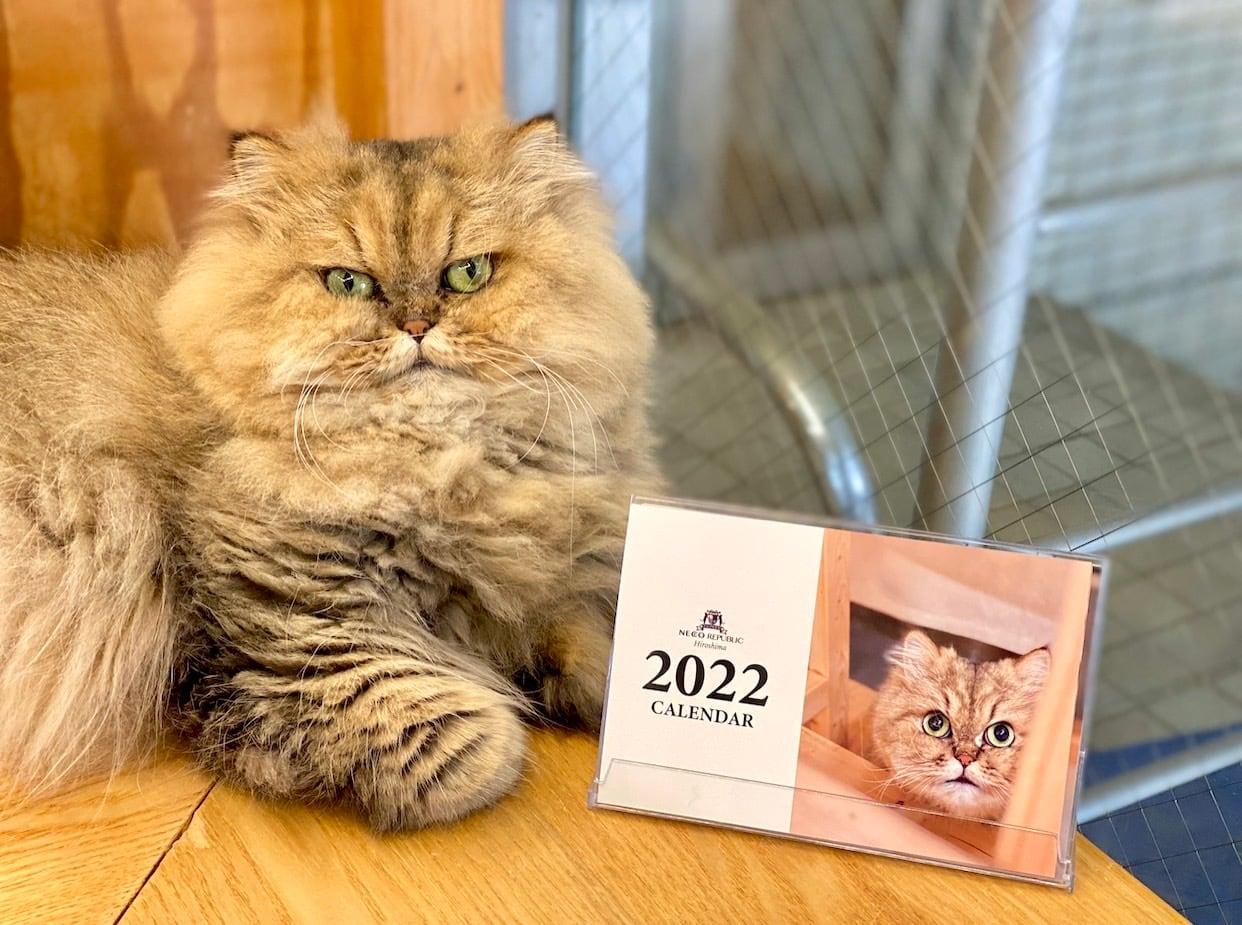 2022年 ネコリパブリック広島 オリジナル卓上カレンダー