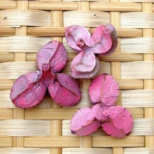 ツバキの殻 ピンク 3個