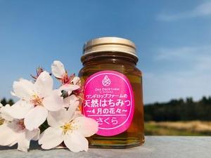 【国産】桜のはちみつ100g(限定100本)国産