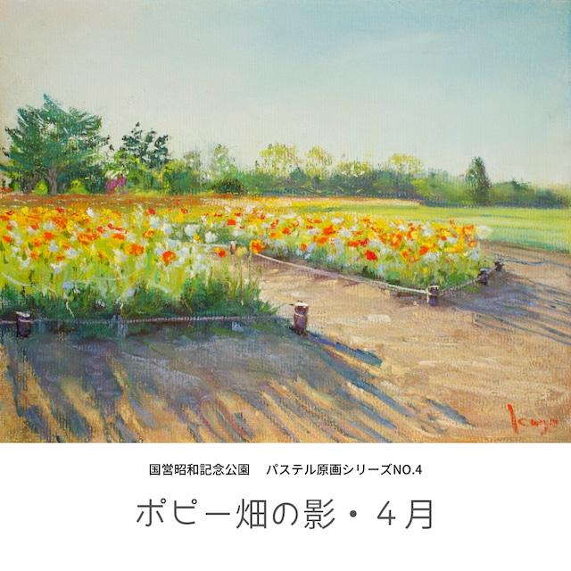 NO.4「ポピー畑の影・4月」