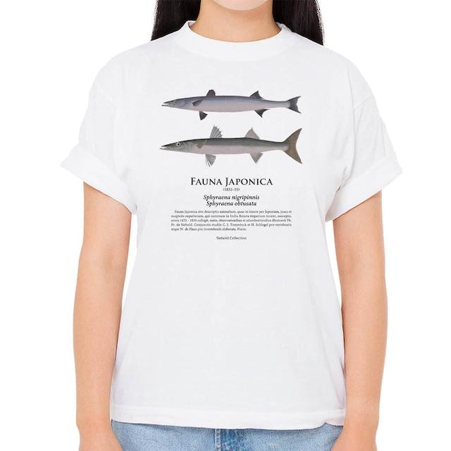 【アカカマス・ヤマトカマス】シーボルトコレクション魚譜Tシャツ(高解像・昇華プリント)