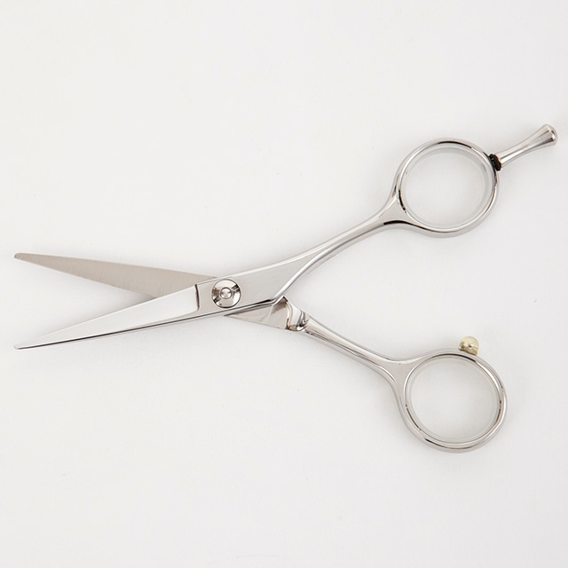 美容師用カットハサミ・5.0カットシザー・先細・メガネ・(通常価格:35,800円)