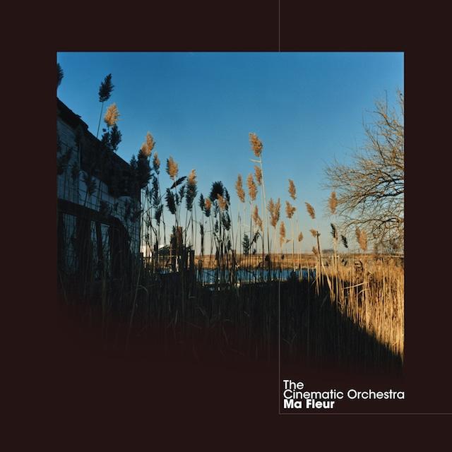 【レコード】The Cinematic Orchestra - Ma Fleur(Ninja Tune)