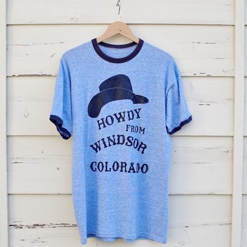 1970 - 80s Old Ringer Tee / 70年代 リンガー Tシャツ / ビッグ サイズ