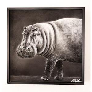 Hippo in Monochrome
