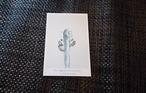 ポストカード 植物 I