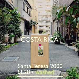COSTA RICA [SL28] -中深煎- 200g