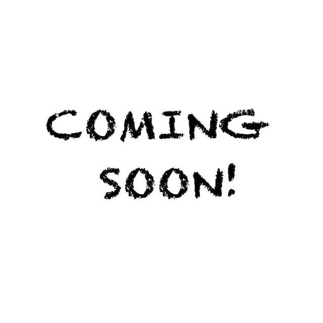 emoemoブローチ フクロウ レジン EMA011