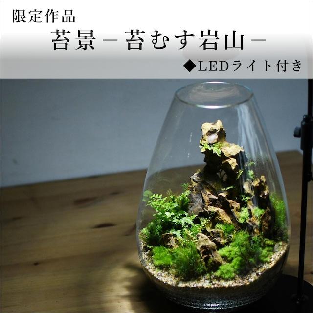 苔景-苔むす岩山-◆LEDライト付き【苔テラリウム・現物限定販売】2021.10.22#6
