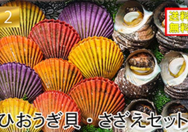 ヒオウギ貝・サザエセット【冷凍・送料無料】